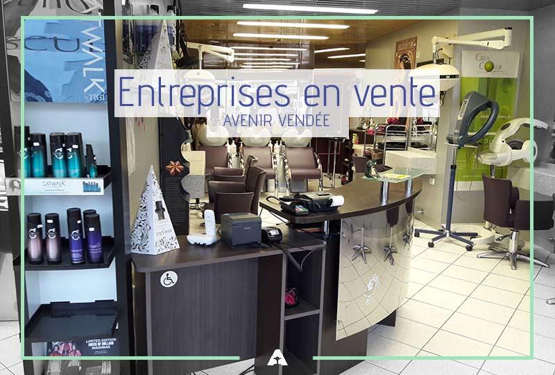 Entreprises à vendre - Vendée La Roche sur Yon