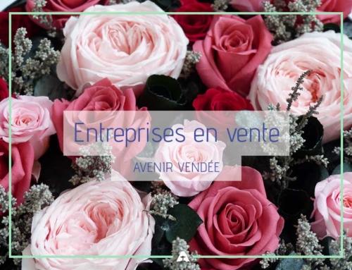 Entreprises en vente – Mars 2019 – Vendée